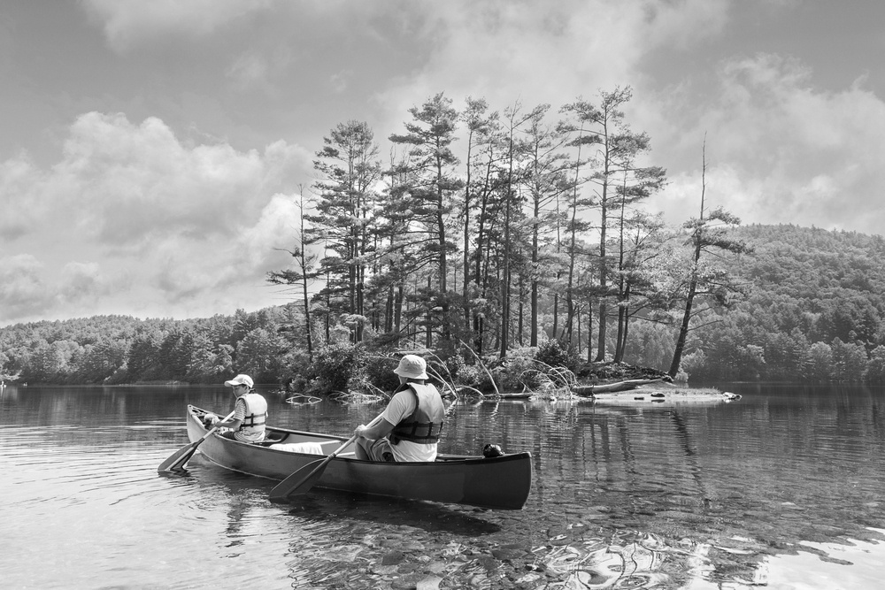 two people on a canoe in shallow water near an island with trees